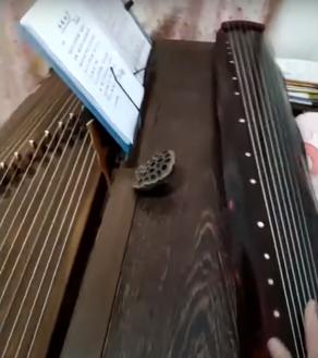 2020-08-09instrument4